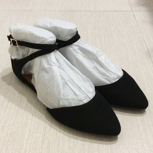 Flats with Pointed Toes and Ankle Straps
