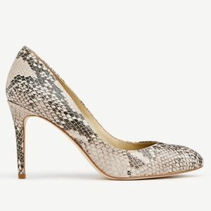 Ann Taylor Shoes - NWOB Ann Taylor leather snake pumps 9