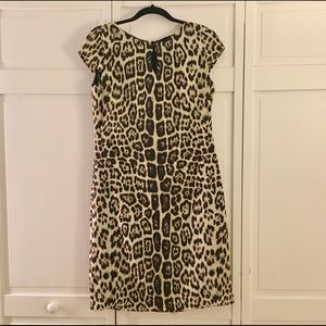 Alex Marie Dresses & Skirts - NWOT Alex Marie Animal Print Dress