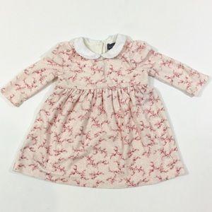 Ralph Lauren Other - Ralph Lauren Peter Pan Collar Floral Print Dress