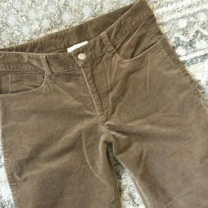 3 Sisters  Pants - Midrise velvet jegging stretch pant 6 high waisted
