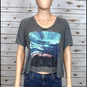 "Chaser Tops - Chaser Gray ""California Dreams"" T-Shirt"