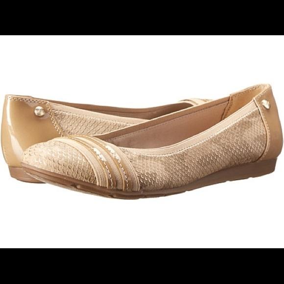 939f947af18 Anne Klein Shoes - Anne Klein Sport -Atworth (Natural Snake) Flat 6M