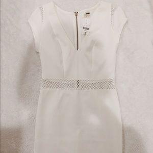 LF Dresses & Skirts - LF Rumor Boutique Dress