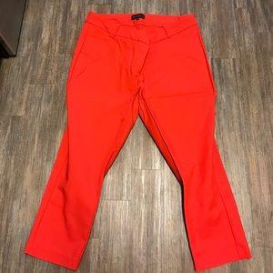 Eloquii Pants - Eloquii Kady fit pants 18S