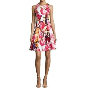 Maggy London floral fit and flare dress size 0