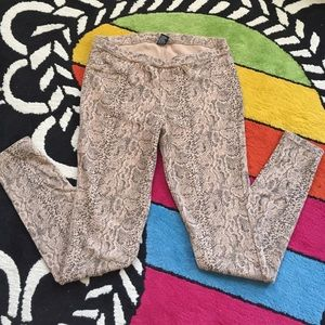 HUE Pants - HUE Python Print Leggings - Size M - Like New!