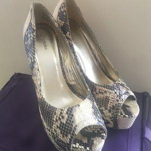 Zigi Soho Shoes - Snake, Heels and Roll