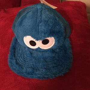 Sesame Street Other - Sesame hat for youth