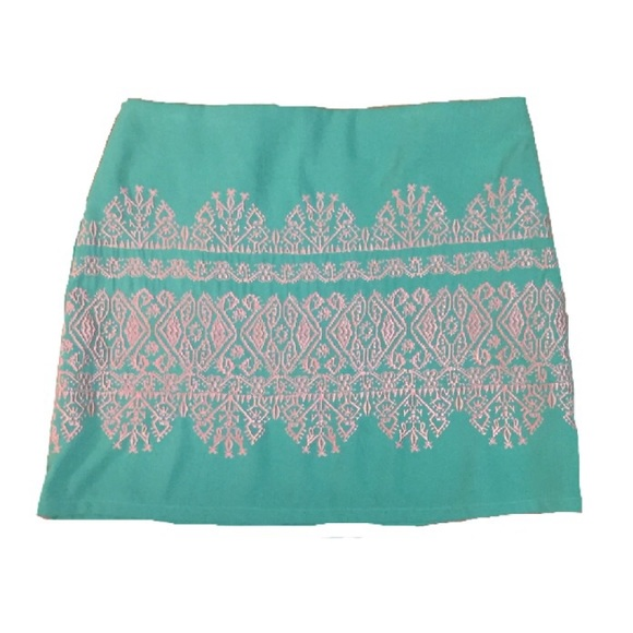 Francesca's Collections Dresses & Skirts - Mint Embroidered Mini Skirt