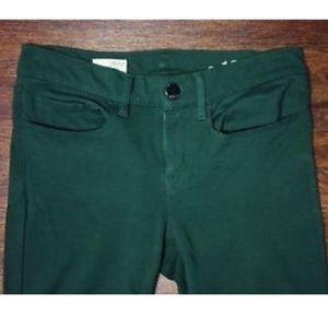 GAP Denim - Gap Tropic Green Legging Jean with inseam zip