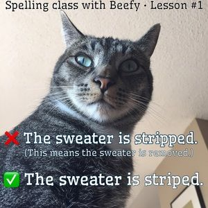 Sweaters - Spelling makes a difference!