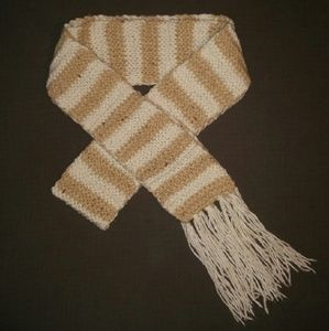 American Eagle Outfitters Accessories - AEO Striped Knit Scarf with Fringe