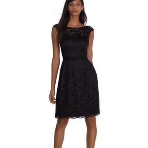 White House black market tulip lace  LBD dress NWT