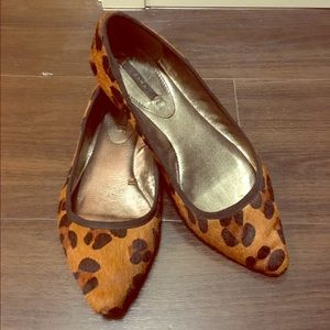 Zara Shoes - Zara animal print flats