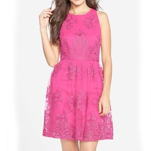 Taylor Fit & Flare Mesh Lace Dress 12 NEW! $158