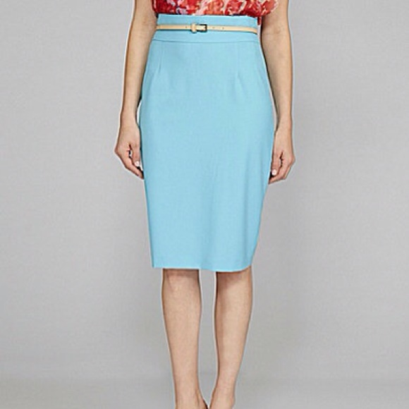 af1ba5baa6 ANTONIO MELANI Skirts   Sky Blue No2 Pleated Pencil Skirt   Poshmark