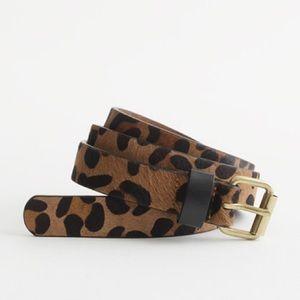 Wide Calf Hair Belt in Leopard