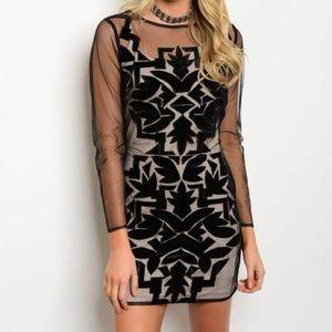 For Love and Lemons Dresses & Skirts - New velvety illusion dress