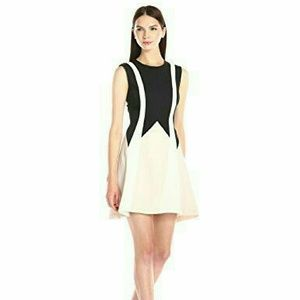 BCBG 'Abigayle' Colorblock Satin Fit & Flare Dress