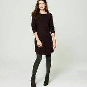 LOFT NWT Sweaterdress L