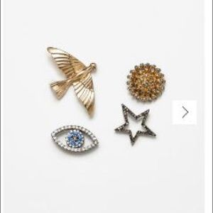 🆕Zara Brooches