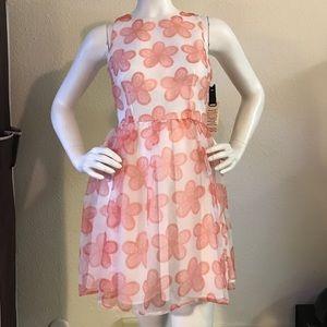 BB Dakota Daisy Print Organza Fit & Flare Dress