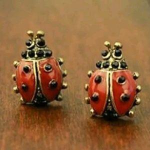 Jewelry - New lady bug earrings
