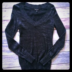 Express Navy Shimmer Sweater