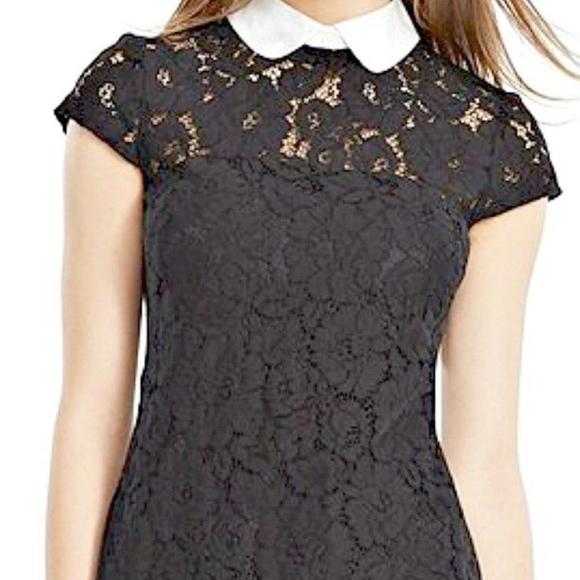Lauren Ralph Lauren Dresses & Skirts - Lauren Ralph Lauren lace contrast collar Dress