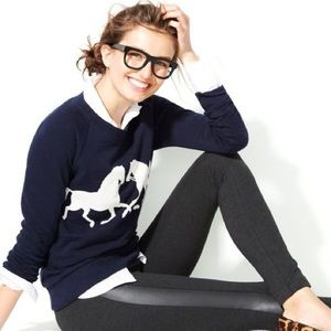 J. Crew Horsing Around Sweater (Navy)