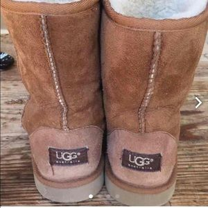 UGG Shoes - UGG classic short boots Chestnut 5