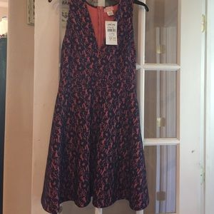 Dresses & Skirts - Dress- Navy lace with salmon background.