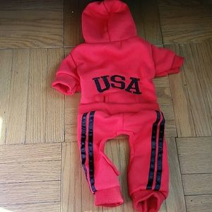 Accessories - Red dog puppy USA Snow jump Suit