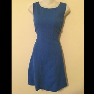 Taylor Dresses & Skirts - Blue textured fit and flare dress