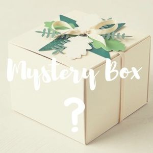 Other - ❄WHILE SUPPLIES LAST! Mystery WINTER/FALL Box🍂