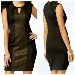 Thalia Sodi Black Gold Body Con Mini Dress XL