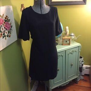 Monteau Dresses & Skirts - Monteau Dress! NWT 3/4 Sleeves with Scallop hem