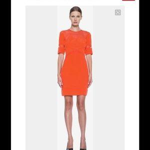 Victoria Beckham Dresses & Skirts - Victoria Beckham: Tulle Silk Dress in Tangerine