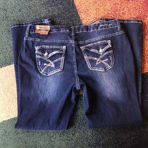 Ariya Denim - Amethyst jeans plus slim boot NWT
