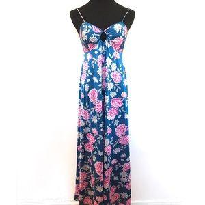 Vintage Floral Dress / Night Gown