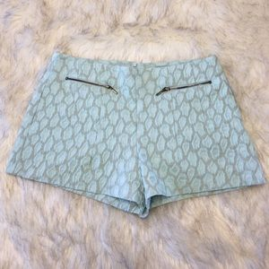 Blue High Waist Zara Shorts