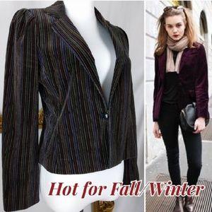 Vintage Velvet Multi Stripe Blazer Jacket