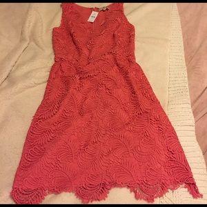 Loft coral scalloped lace dress