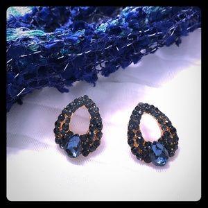 Jewelry - Stunning earrings!