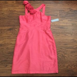 London Times Dresses & Skirts - NWT! Rosy dress by London Times