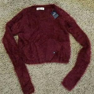 Hollister Tops - NWT Hollister Crop Sweater