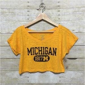 University of Michigan burnout crop top, sz. S
