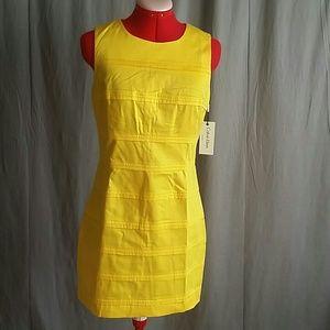 CALVIN KLEIN Dress Size 4 Yellow