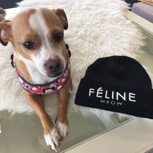 Accessories - Féline Black Beanie